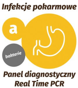 Real-Time PCR - Panel Pokarmowy (a) : Bakterie